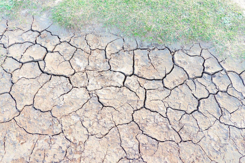 Impacts du retrait-gonflement des argiles et de la sécheresse sur les ouvrages et nouvelles solutions de confortement