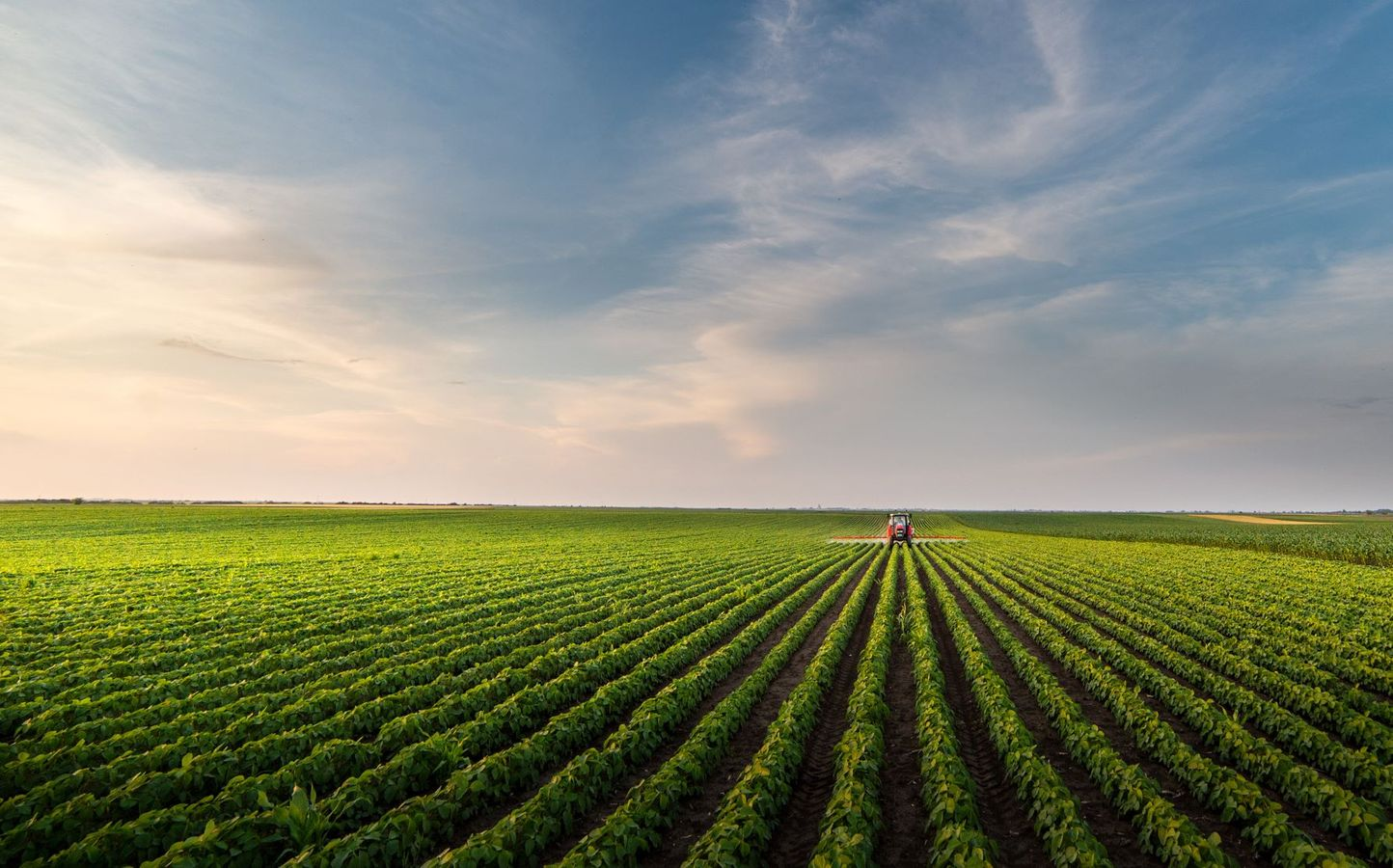 Les périmètres de protection des espaces agricole, naturels et périurbains (PAEN / PEAN)