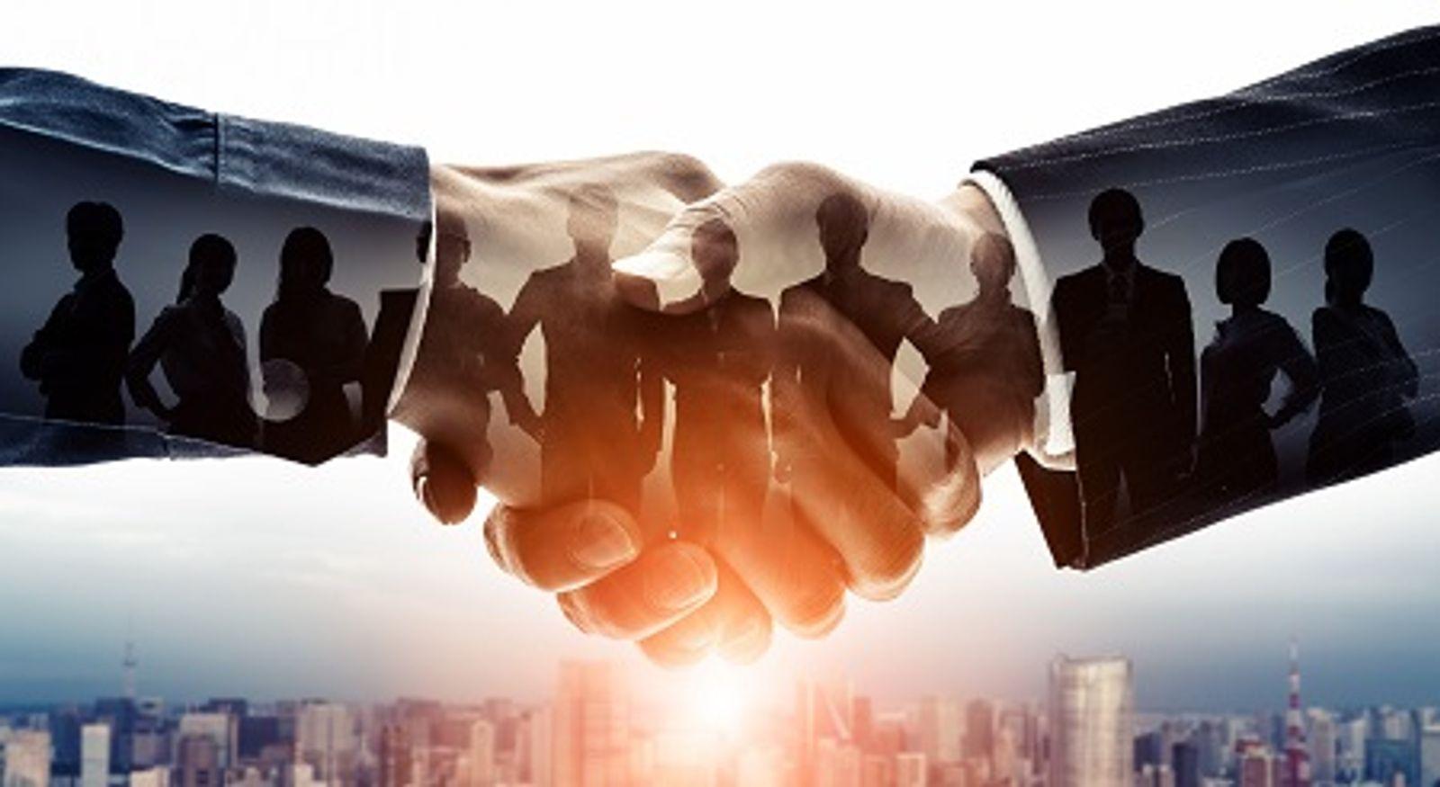 Recensement et point sur les particularités des différentes catégories de contractuels et de contrats après la réforme de la loi sur la transformation de la fonction publique (LTFP)