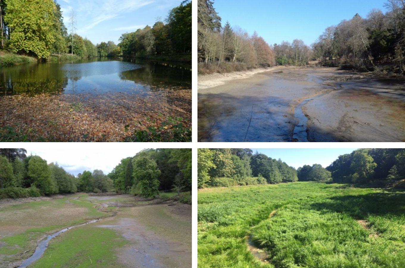 REX : étude sur les plans d'eau connectés du bassin versant de l'Oudon