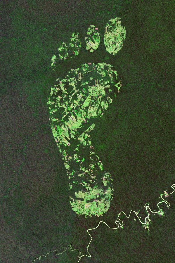 #ANB2020 - V13. La mesure de l'empreinte biodiversité comme levier d'inversion de la courbe d'érosion de la biodiversité