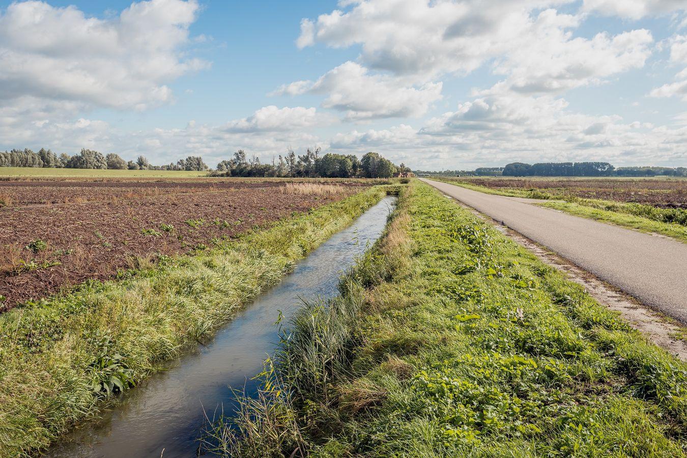 #ANB2020 - V15. Bords de champs - Appui au développement et à la restauration des bordures via un plan de gestion territoriale