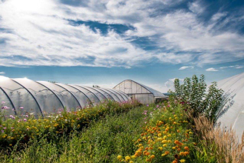 #ANB2020 - Agri A3. Freins et leviers dans les filières agro-alimentaires pour une vraie prise en compte de la biodiversité