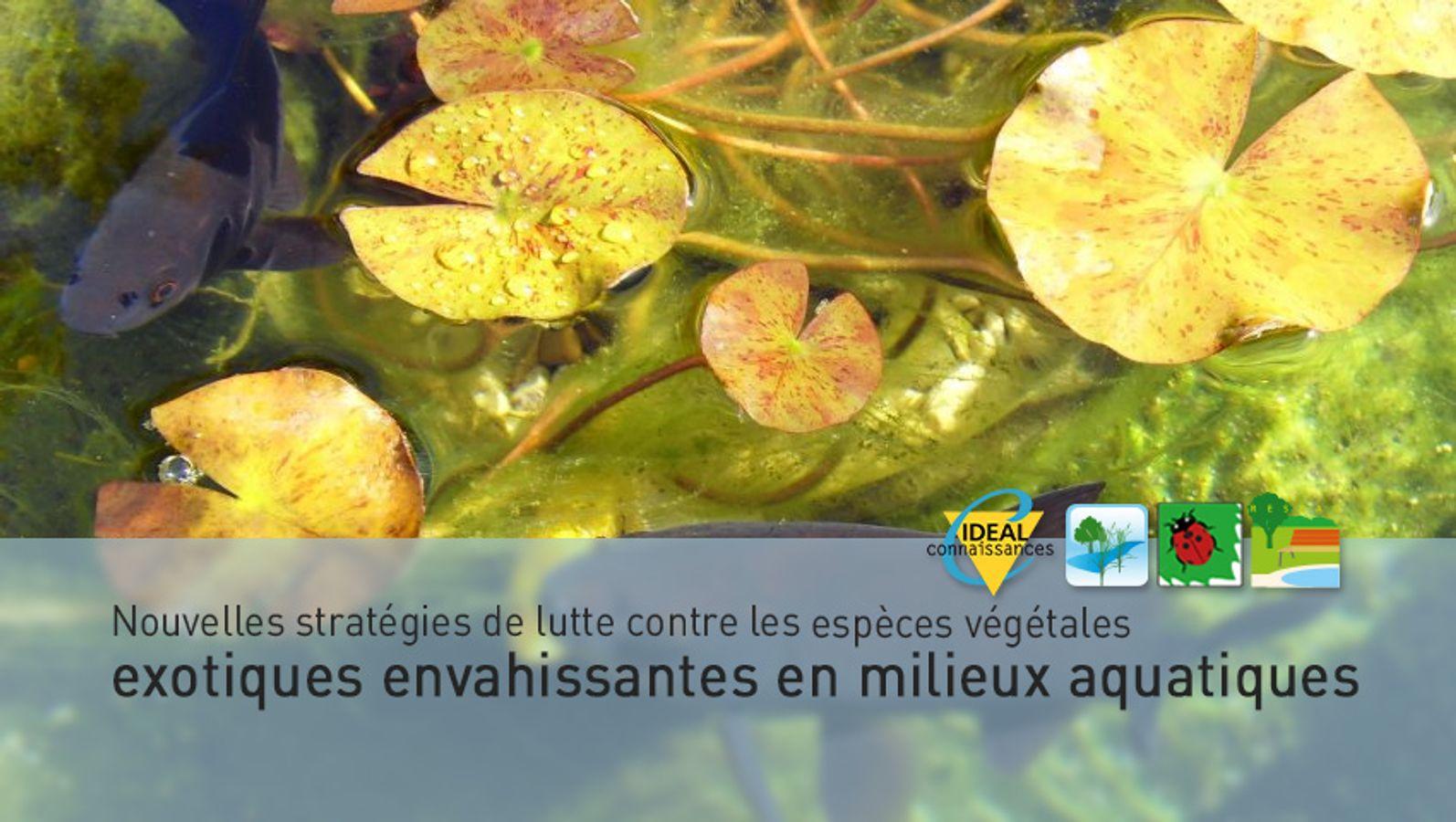 Nouvelles stratégies de lutte contre les espèces végétales exotiques envahissantes en milieux aquatiques