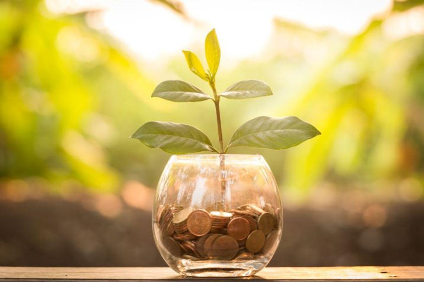 Finance Responsable : quels sont les grands enjeux pour les collectivités ?