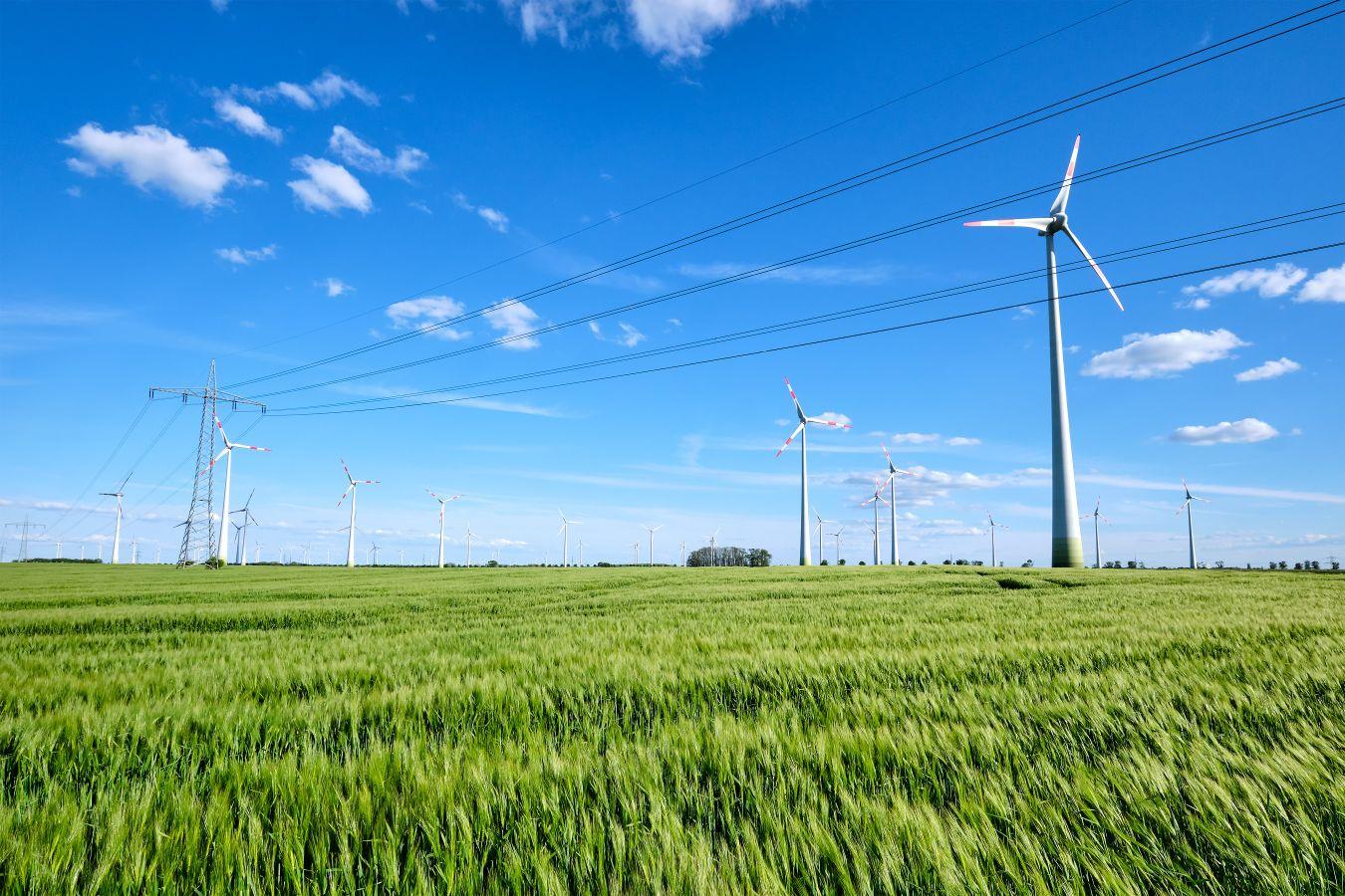 Une politique locale intégrée de transition énergétique sur le territoire du parc naturel régional des Grands Causses