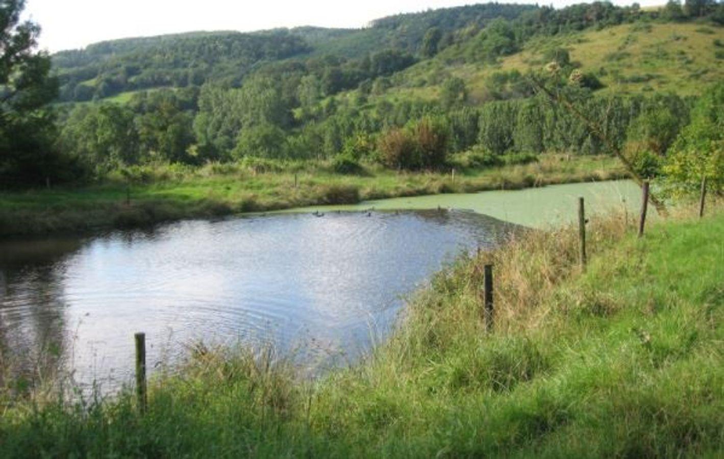 Retenues d'eau : gestion quantitative de la ressource et impacts cumulés