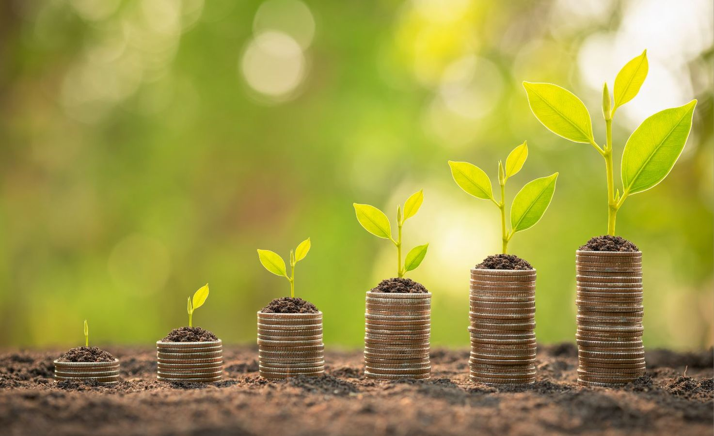Les Paiements pour Service Environnementaux : un nouvel outil pour préserver la qualité de la ressource