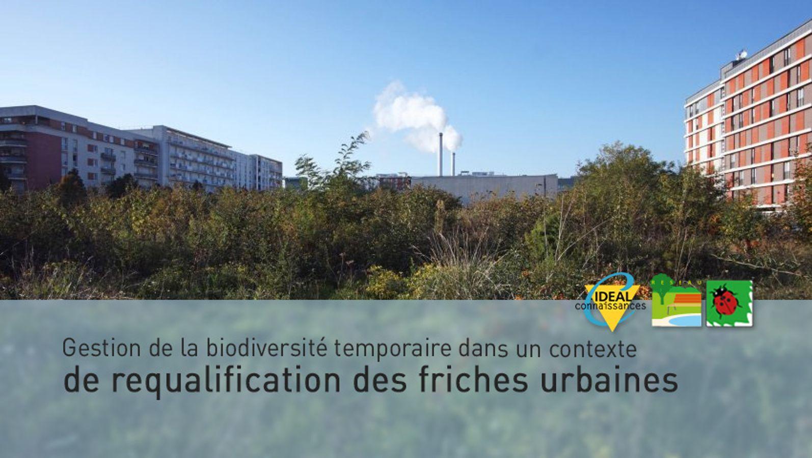 Gestion de la biodiversité temporaire dans un contexte de requalification des friches urbaines.