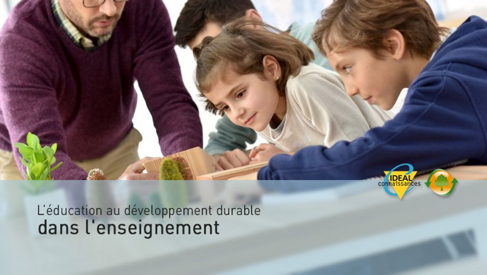 L'éducation au développement durable dans les établissements scolaires