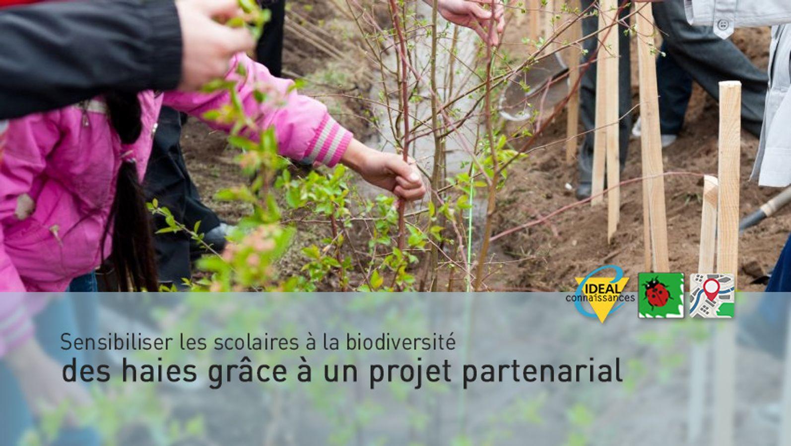 Sensibiliser les scolaires à la biodiversité des haies grâce à un projet partenarial