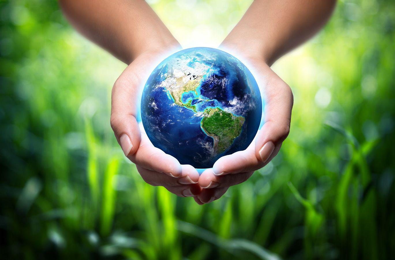 REX de la ville de Niort: construire une démarche de développement durable