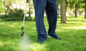 #ANB2020 - V8. Une gestion durable des lieux de vie par les alternatives aux pesticides de synthèse