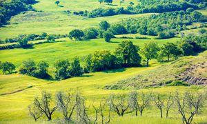 #ANB2020 - Agri A4. Les services rendus par les infrastructures agroécologiques (services socio-économiques et environnementaux)
