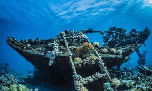 Aspects juridiques de l'immersion des navires pour des intérêts économiques et écologiques
